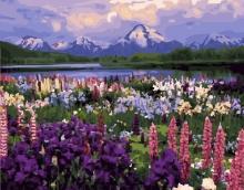Картина по номерам Долина цветов 40х50см.